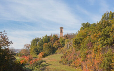 Percorsi inediti tra natura, leggende e storia, antichi boschi a Monte San Pietro e dintorni